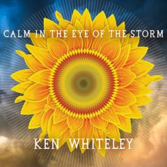 773958126527- Calm In The Eye of the Storm - Digital [mp3]
